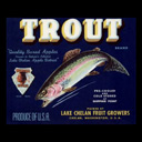 Jason Trout - Fish Decoy & Ice Saw Maker